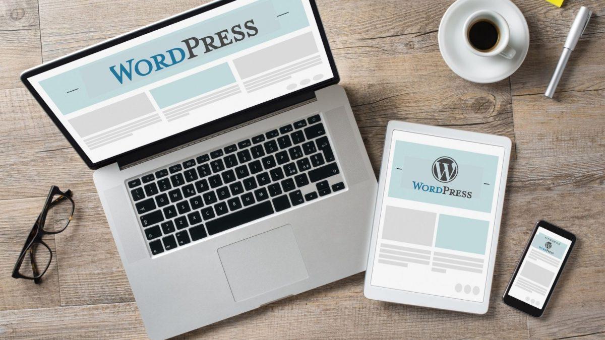 Formation en ligne- Stories Wordpress