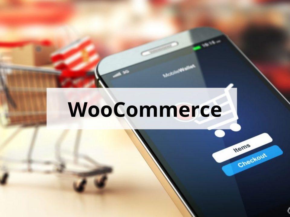 wordpress plugin - formation woocommerce en ligne