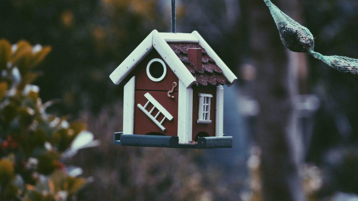 diversifier-patrimoine-immobilier